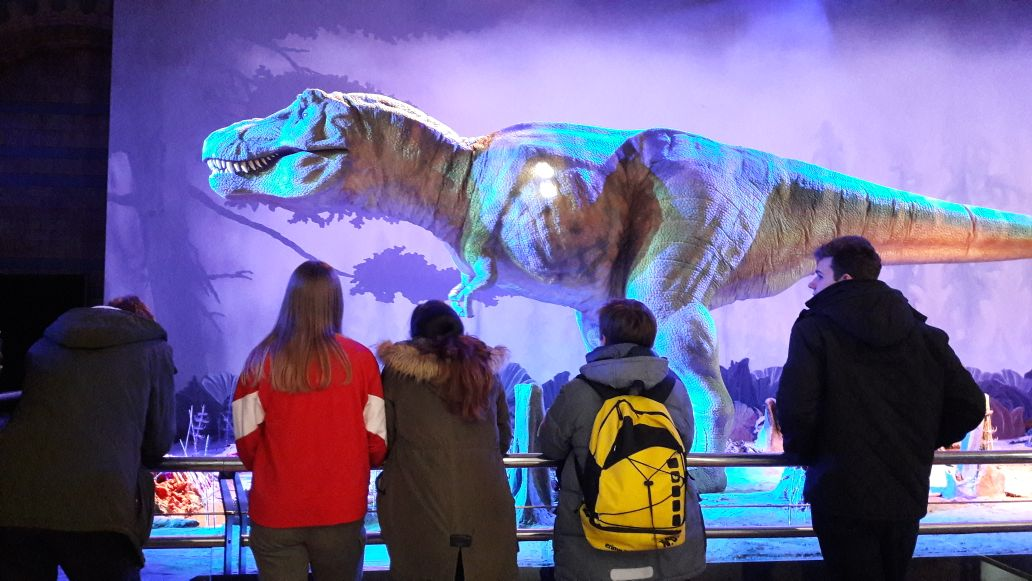 Natural History Museum III